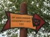 090912-tour-zur-betteleiche-3