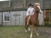 0903-cowboy-dieter-bernhardt-aus-schlotheim-61.jpg