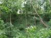 0906-wandertour-erdfall-dachrieden-23