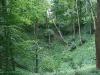 0906-wandertour-erdfall-dachrieden-27