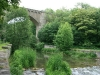 0906-wandertour-erdfall-dachrieden-35