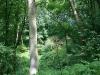 0906-wandertour-erdfall-dachrieden-37