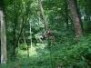 0906-wandertour-erdfall-dachrieden-41