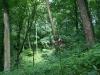 0906-wandertour-erdfall-dachrieden-42