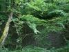 0906-wandertour-erdfall-dachrieden-43