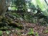 entlang-des-naturlehpfades-faulungen-35.jpg