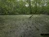 090502-naturschutzgebiet-golke-ufhoven-20.jpg
