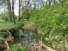 090502-naturschutzgebiet-golke-ufhoven-26.jpg