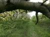 090502-naturschutzgebiet-golke-ufhoven-48.jpg