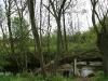 090502-naturschutzgebiet-golke-ufhoven-81.jpg