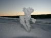 winter-im-hainich-1.jpg