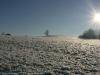 winter-im-hainich-10.jpg