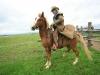 mit-pferden-unterwegs-4