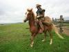 mit-pferden-unterwegs-5