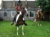 mit-pferden-unterwegs-7