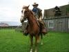 mit-pferden-unterwegs