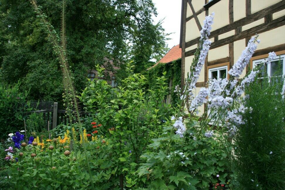 ih090621-garten-am-kristanplatz-fam-schmidt-und-schwarze-17