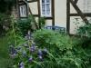 ih090621-garten-am-kristanplatz-fam-schmidt-und-schwarze-1