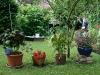 ih090621-garten-am-kristanplatz-fam-schmidt-und-schwarze-2