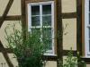 ih090621-garten-am-kristanplatz-fam-schmidt-und-schwarze