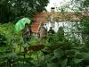 ih090621-garten-fam-hose-8