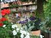 zu-besuch-bei-siegfried-bohning-in-bollstedt-16