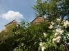wasserburg-seebach