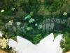 090711-impressionen-thomasquelle-thomaswiese-popperoeder-quelle-4