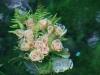 090711-impressionen-thomasquelle-thomaswiese-popperoeder-quelle-9