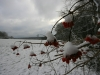 erster-schnee-12