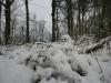erster-schnee-9